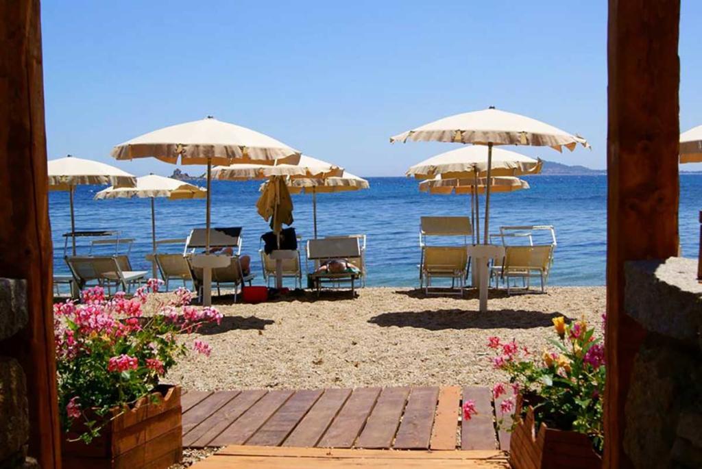 tortuga_beach